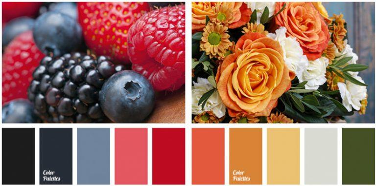 Получите цветовые схемы, сгенерированные из стоковых фотографий с ColorPalettes.net