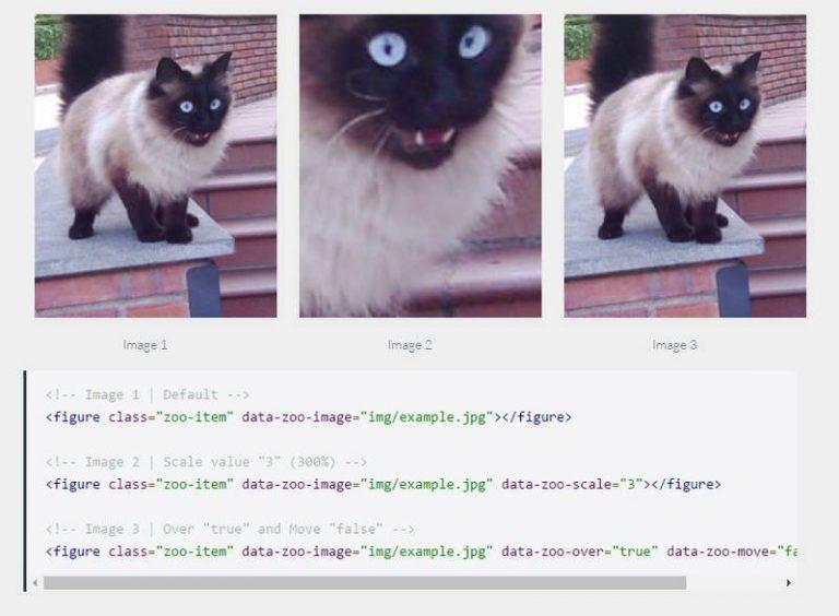 Увеличивайте изображения при наведении курсора на плагин ZooMove jQuery